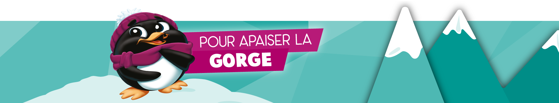 hiver20-21_banner-1-gorge